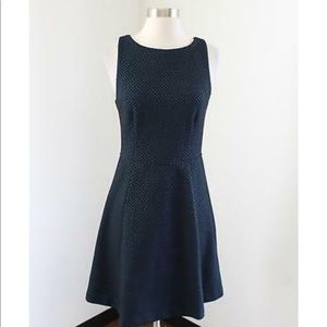 LOFT Black with Blue Polka Dot dress